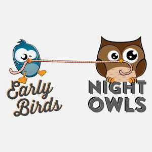 http://www.ibs-uae.com/innovate/wp-content/uploads/2014/07/early-birdnightowls.jpg