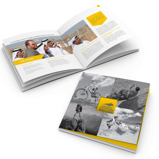 http://www.ibs-uae.com/innovate/wp-content/uploads/2015/07/brochure-540x540.jpg